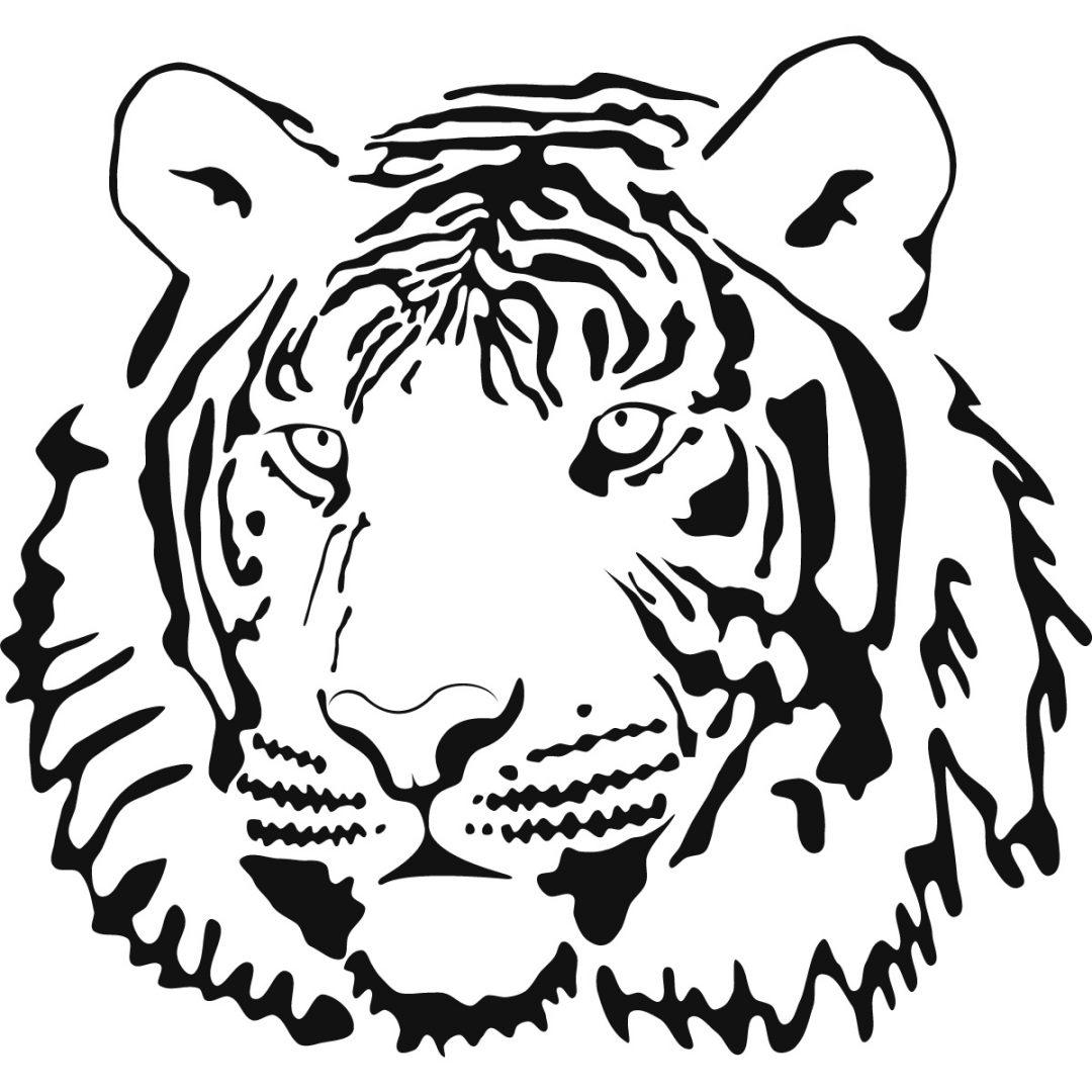 Line Drawing Of A Tiger S Face : Galería de imágenes dibujos tigres para colorear