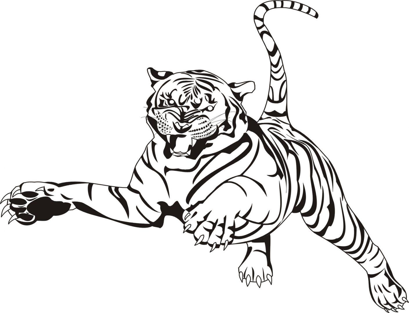 Dibujo de tigre saltando :: Imágenes y fotos