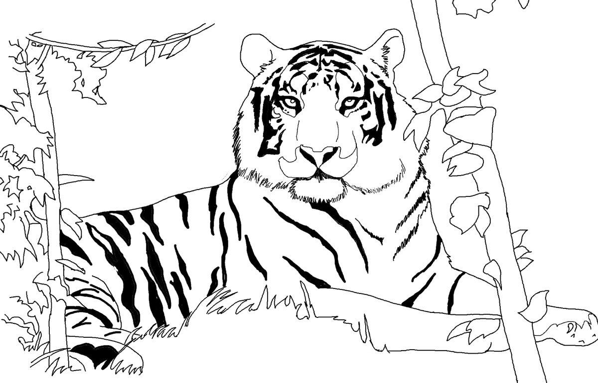Dibujos de tigres :: Imágenes y fotos